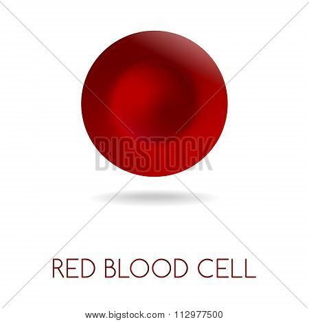 Blood Red Cell