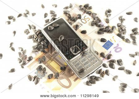 Bankroll, phone and sunflower