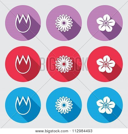 Flower icon set. Tulip, camomile daisy, orchid. Floral symbol. White sign on round button with long