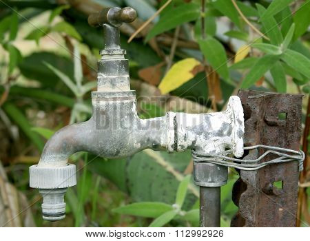 Old Garden Tap With Plastic Hose Connection