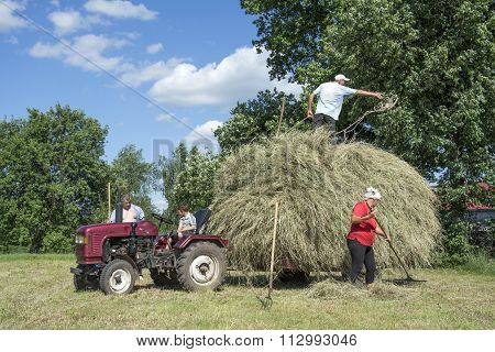In The Summer On The People Harvested Hay From The Field And Placed Him In The Trailer To The Tracto