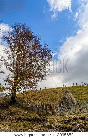 Haystack with a freshly mown meadow as background. Vertical view of a haystack in a bright autumn da