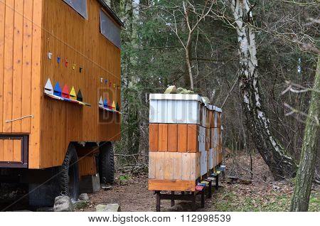 Traditional Beekeeping, South Bohemia