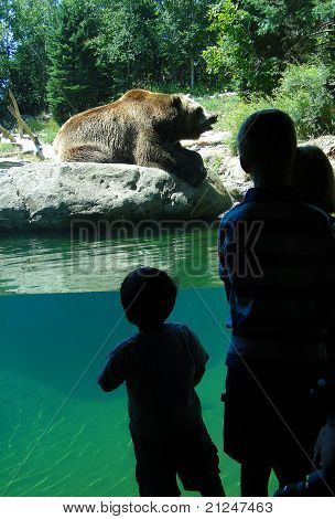 Children Watch The Grizzly Bear