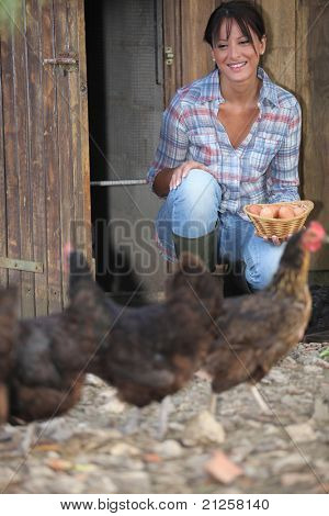 a woman gathering eggs in a hen house