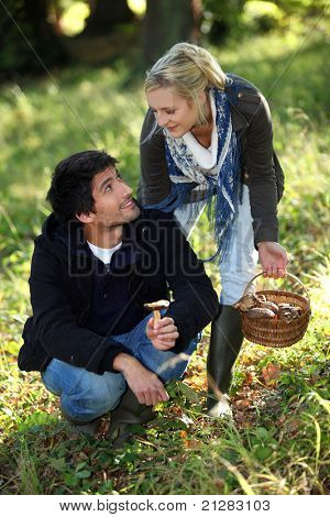 happy couple gathering mushrooms