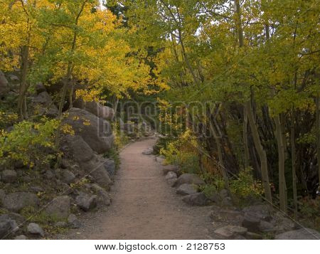 Path Into Autumn