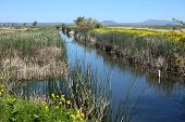 pic of klamath  - National wildlife refuge  - JPG