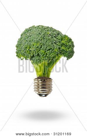 eco energy with broccoli lamp