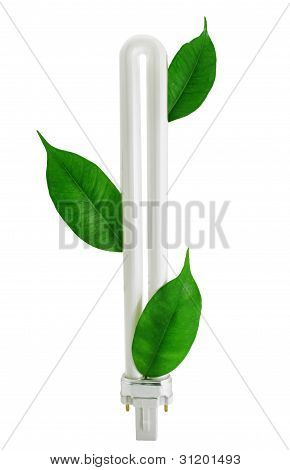 Fluorescent Eco Lamp With Green Leaves