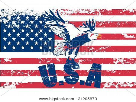 Eagle with usa in grunge illustration