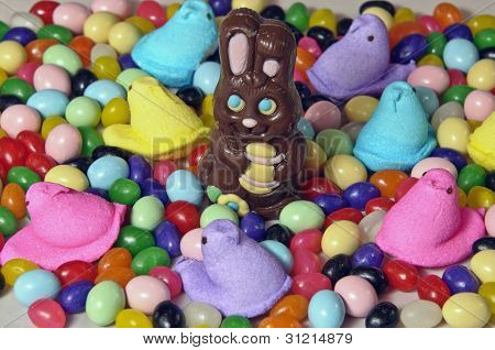 Chocolate Easter Rabbit