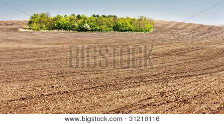 landscape with a field in Southern Moravia, Czech Republic