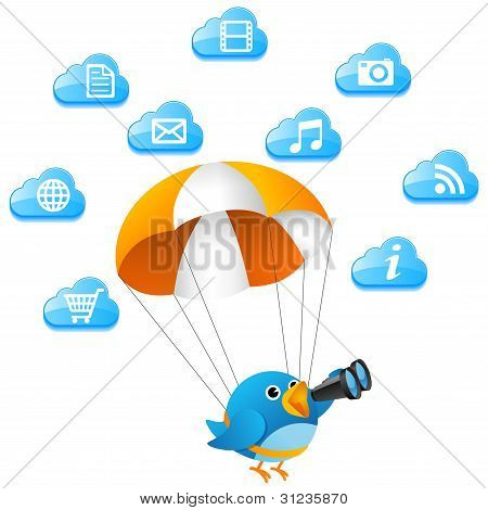 Blue bird searching on cloud