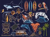 Summer Paradise Surfing Vintage Retro Set Icons Colorful Collection With Sea Ocean Animals Wave Palm poster