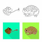 Vector Illustration Of Wildlife And Bog Logo. Set Of Wildlife And Reptile Stock Symbol For Web. poster