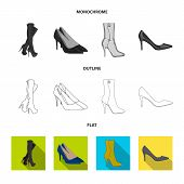 Vector Illustration Of Heel And High Logo. Collection Of Heel And Stiletto Vector Icon For Stock. poster