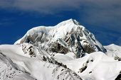 Mount Cook  New Zealand poster