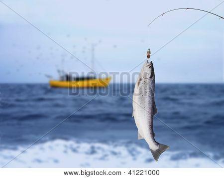 Gran salmón
