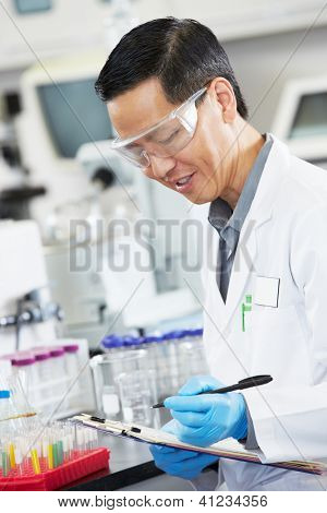 Male Scientist Working In Laboratory