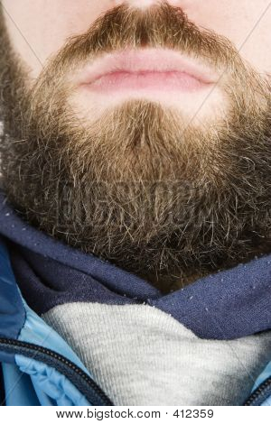 Beard Close Up