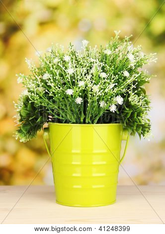 Decorative flowers in pot on bright background