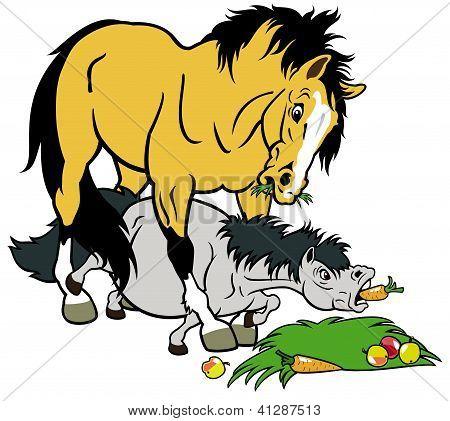 Cartoon Horse And Pony