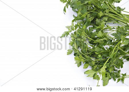 Fresh Herb: Parsley
