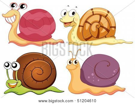 Illustration of the four snails with different shells on a white background