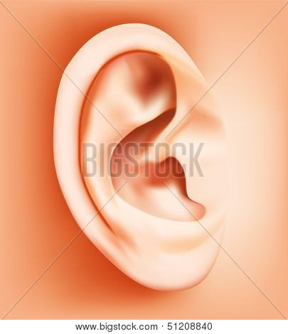Ear closeup. Rasterized illustration. Vector version in my portfolio