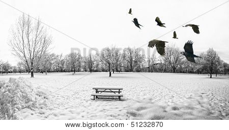 a scenic cold winter landscape with snow and trees and a flock of birds flying by
