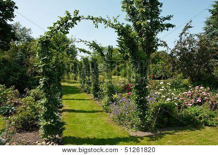 Garden Tunnel Archway In A Classical Garden