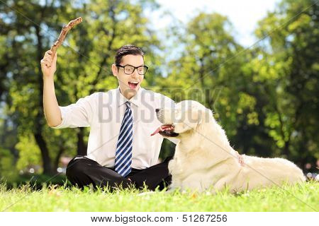 Male with tie and glasses sitting on a green grass and playing with labrador retriver in a park
