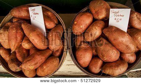 Two bushels of sweet potatoes