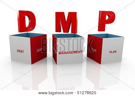 3D Box Of Dmp - Debt Management Plan