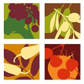 picture of olive shaped  - abstract vector fruit and vegetable designs set 1 - JPG
