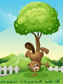 Illustration of a beaver doing a handstand at the hilltop