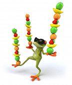 foto of orange frog  - Frog - JPG