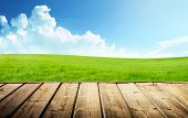 picture of neat  - Green field and wood floor - JPG