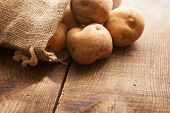 image of potato-field  - Fresh harvested potatoes spilling out of a burlap bag - JPG