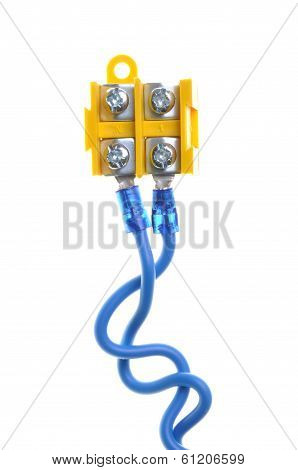 Electric wires with terminal block