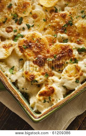 Homemade Cheesey Scalloped Potatoes