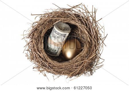 Bird's nest with golden egg and money, cut out on white background