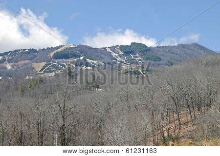 Christmas Tree Farms on Distant Mountains
