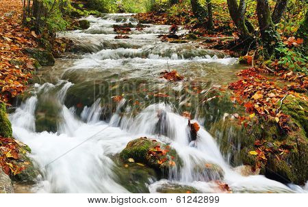 Autumn colors in Plitvice National Park, Croatia, Europe