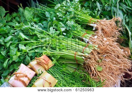 Green vegetables and dark leafy food background as a healthy eating concept
