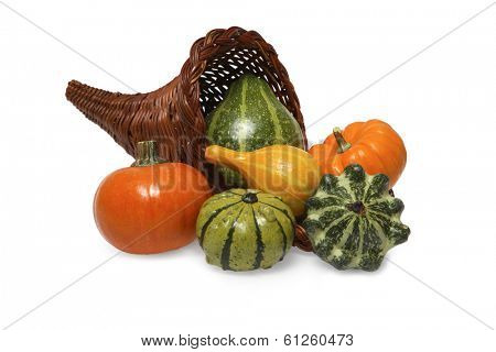 cornucopia full of gourds on white