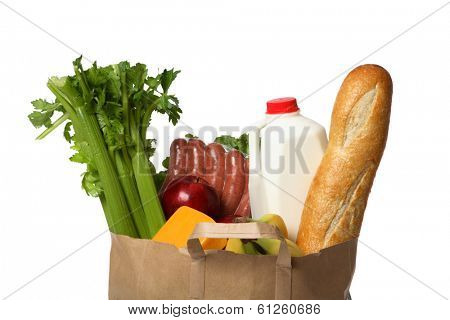 Groceries in Paper Bag