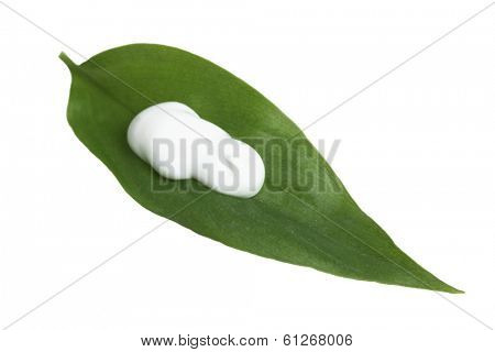 Leaf with skin care lotion on white background