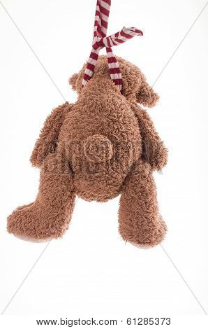 Image of teddy bear who is committing suicide by hanging itself